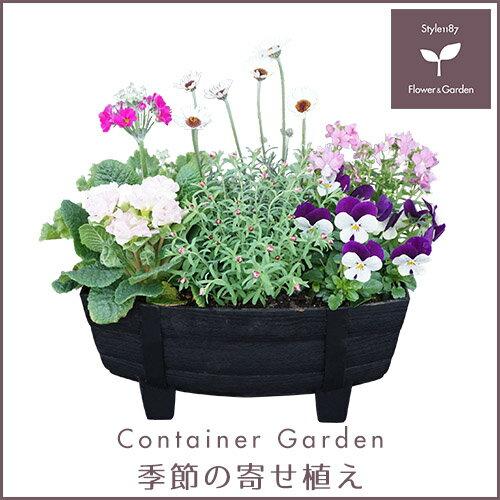 【送料無料】季節の寄せ植え タル型鉢 黒 冬 ギフトにも最適な季節のお花を寄せ植えに♪【プレゼント ブリキピック 玄関 ベランダ】