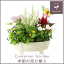 【送料無料】季節の寄せ植え タル型鉢 白 ギフトにも最適な季節のお花を寄せ植えに♪ 【プレゼント ブリキピック 玄関 ベランダ】