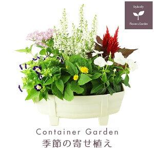 季節の寄せ植え 春・夏 タル型鉢 白 ギフトにも最適な季節のお花を寄せ植えに♪【父の日 プレゼント ガーデンピック 玄関 ベランダ 送料無料 沖縄・離島を除く】