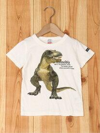 【SALE/50%OFF】RUGGEDWORKS 恐竜転写PT半袖T ラゲットワークス カットソー キッズカットソー グリーン ブラウン【RBA_E】