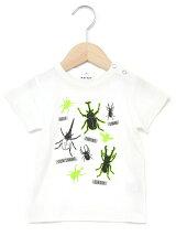天竺昆虫プリント半袖Tシャツ