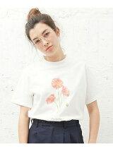 L&HARMONY/(W)Asami Hattori Tシャツ