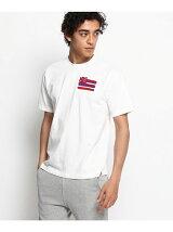 国旗風さがらワッペンTシャツ