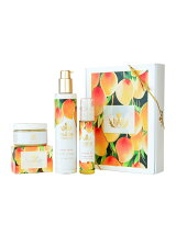 (公式)Luxe Spa Box Mango Nectar