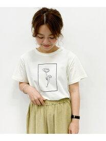 studio CLIP YOHイラストコラボTシャツ スタディオクリップ カットソー Tシャツ ホワイト グリーン ブルー ブラウン ピンク ブラック カーキ グレー ベージュ レッド