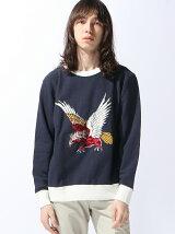 【M】Eagle Trainer