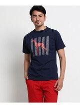 サルーキ犬×アルファベットTシャツ