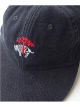 AB CAP