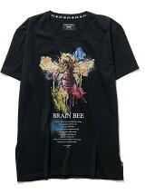 BRAIN BEE T
