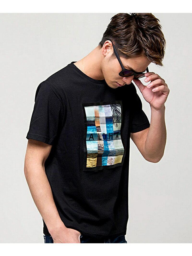 CavariA CavariAアロハフォトプリントクルーネック半袖Tシャツ シルバーバレット カットソー
