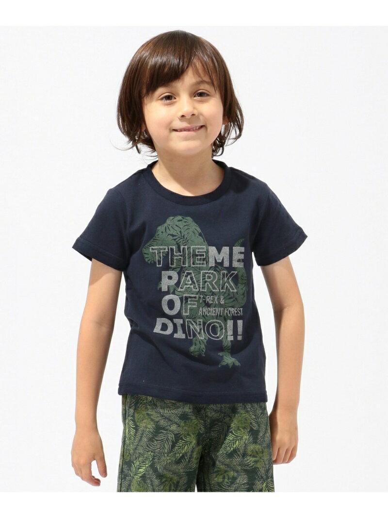 any FAM KIDS 【BOYS】DINOプリント 天竺 Tシャツ エニィファム カットソー