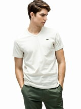 (M)ベーシックVネックTシャツ (半袖)