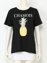 CHAMOIS T