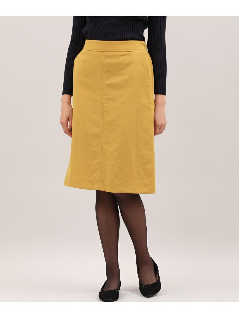 I.T.'S. international ボックスAラインスカート《Karl Karl》 イッツインターナショナル スカート【送料無料】