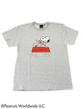 PEANUTS × BEAMS T / 別注 Tee 17AW