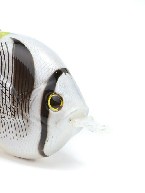 FISH MEASURE-BUTTERFLYFISH