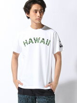 (M)HAWAII ISLAND ST