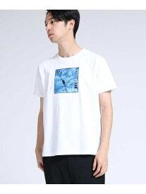 【SALE/50%OFF】PhotoPaletteプリントTシャツ ティーケータケオキクチ カットソー【RBA_S】【RBA_E】