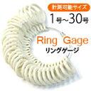 指輪 リング サイズ 計測 測定,リングゲージ リングサイズゲージ プロ仕様,ピンキーから親指 足指まで【あす楽対応】
