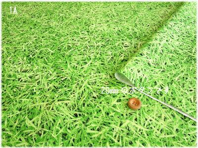 キャンディーパーティーシリーズのプリント生地-芝生でゴロン-≪ぷらんぷちぃくす≫Plump Cheeksグラスグリーン色がとってもきれいなリアルプリントのキャンバス生地です。neonジューン≪CandyParty≫
