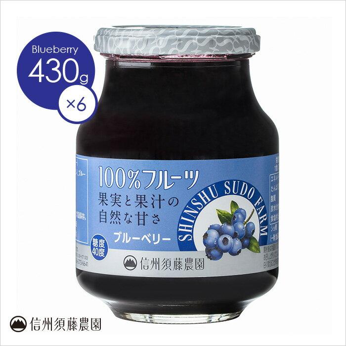 送料無料 【ケース販売】 ブルーベリー430g 1ケース(6個入り)低糖度 信州須藤農園 100%フルーツ