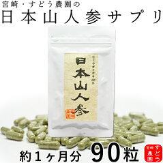 【日本山人参】ヒュウガトウキ100%粉末カプセル90粒