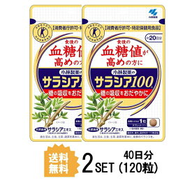 【2パック】【送料無料】 小林製薬 サラシア100 約20日分×2セット (120粒) ダイエットサプリメント 特定保健用食品