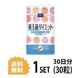 【送料無料】 DHC 善玉菌ダイエット 30日分 (30粒) ディーエイチシー サプリメント ビフィズス菌 ラクチュロース 健康食品 粒タイプ