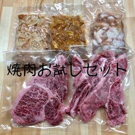 送料無料!焼肉お試しセット!宮城県産牛ロース バラ ホルモン 豚味付ホルモン みそモツ