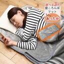 あったか寝ころんぼマット 日本製 送料無料  洗える 寝袋 電気マット ダニ退治 タイマー付き ホットマット 省エネ…