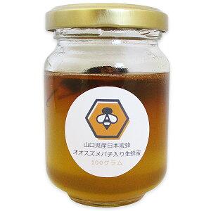 【オオスズメバチ入り生蜂蜜(100g)】【山口県産】【日本蜜蜂】日本蜜蜂ミツバチみつばち 非加熱 垂れ蜜 無給餌 薬品不使用