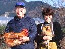 名古屋コーチン 本物の地鶏![ ハーフ ](もも・むね・ささみ各1枚セット)[ 新鮮 国産 鶏肉 ]名古屋コーチン