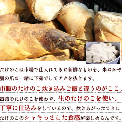 【国産筍使用】穂付き筍の炊き込みご飯[たけのこ:竹の子]