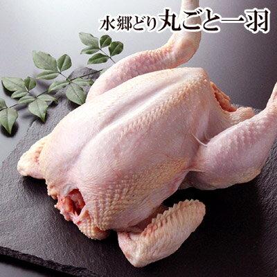 鶏肉 水郷どり 丸ごと1羽(中抜き)[千葉県産][ 鶏肉 国産 水郷とり ][ローストチキン 丸鶏 丸鳥 ]【xmas】