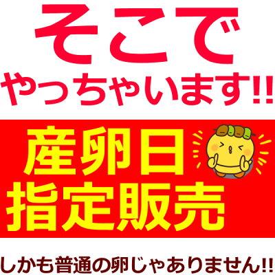 『水郷どり』と『放し飼い自然卵』の親子丼セット!