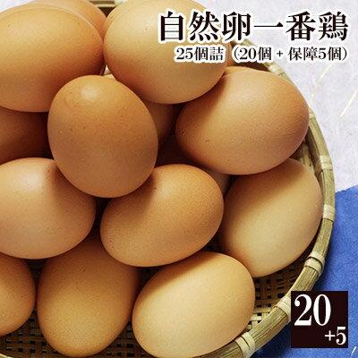 自然卵一番鶏「25個詰」(20個+破損保障分5個)[千葉県産][香取市小見川の地卵]※【 冷蔵 限定配送 】※冷凍限定商品とは同梱できません 別途送料がかかります