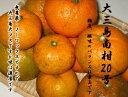 ★Suigun Roman★無農薬栽培加工用南柑20号6Kg