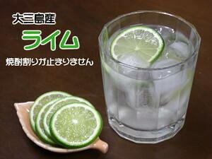 ★Suigun Roman★無農薬栽培に近い★大三島産【ライム1Kg】