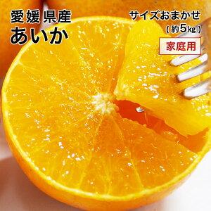(12月中旬より発送) 愛媛県産 あいか 大きさおまかせ 家庭用 訳あり みかん 約5kg 紅まどんなと同品種 送料無料