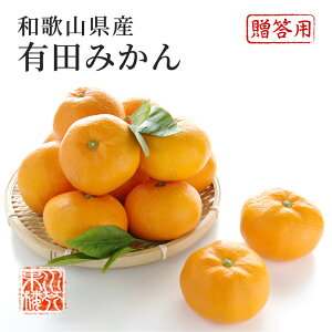 みかん 和歌山県産 有田みかん 秀品 L〜2Lサイズ 約5kg 温州みかん 果物 フルーツ 贈答用 ギフト