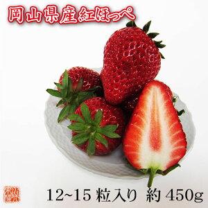 送料無料 フルーツ ギフト 岡山県産 紅ほっぺ 特選 12〜15粒 約450g 化粧箱入 苺 いちご イチゴ