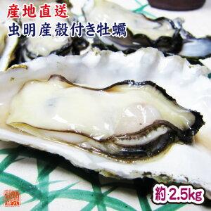 ギフト 牡蠣 生牡蠣 瀬戸内市邑久町虫明産 殻付き牡蠣 約2.5kg 約30個 産地直送 送料無料 カキ かき