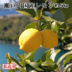 瀬戸内国産レモン 約5kg ご家庭用 送料無料