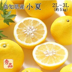 送料無料 みかん フルーツ 高知県産 小夏 2L〜3Lサイズ 約5kg 秀品 贈答用 贈り物 ニューサマーオレンジ 日向夏