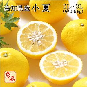 送料無料 みかん フルーツ 高知県産 小夏 2L〜3Lサイズ 約2.5kg 秀品 贈答用 贈り物 ニューサマーオレンジ 日向夏