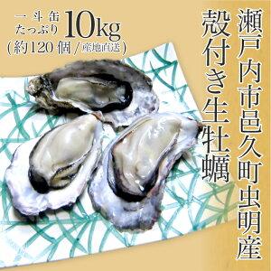 ギフト 牡蠣 生牡蠣 殻付き牡蠣 送料無料 瀬戸内市邑久町虫明産 一斗缶 たっぷり10kg 約120個 産地直送