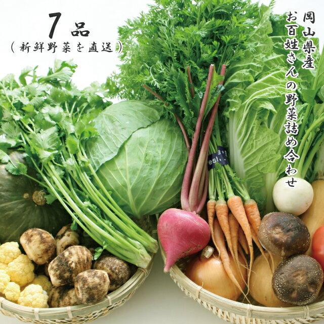 朝採れ 岡山県産 お百姓さんの厳選野菜詰め合わせ 7品 新鮮野菜を直送