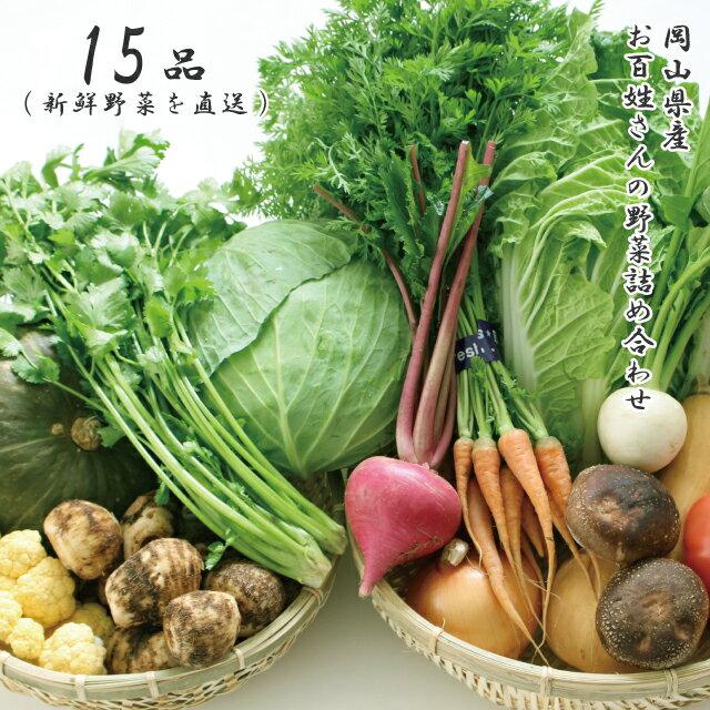 朝採れ 岡山県産 お百姓さんの厳選野菜詰め合わせ 15品 新鮮野菜を直送
