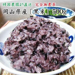 【送料無料】岡山県産 黒米 500g 新米 令和元年産 時国農園より産地直送