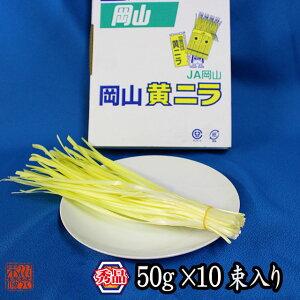 岡山県特産 超高級食材 黄ニラ 秀品 500g(50g×10束) にら 韮